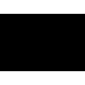 Logo_GOSPORT_Noir_RVB